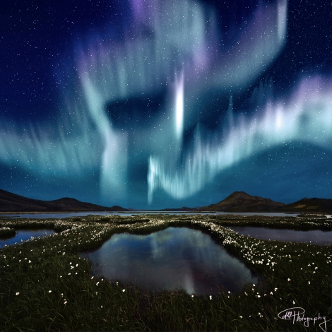 Amazing Northern Lights in Iceland