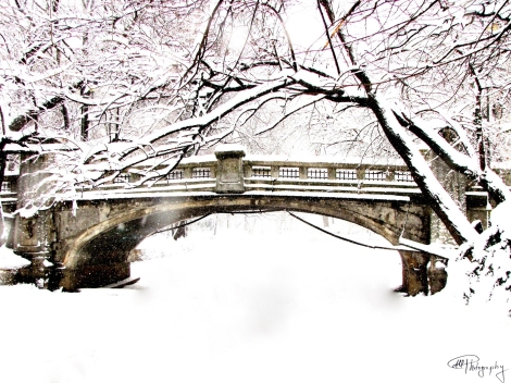 Bridge Covered With Snow
