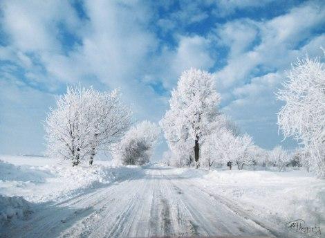 Snow in Telatyn Poland