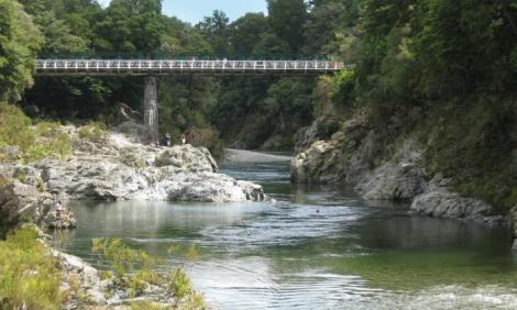 Pelorus Bridge, Forest River Scenes